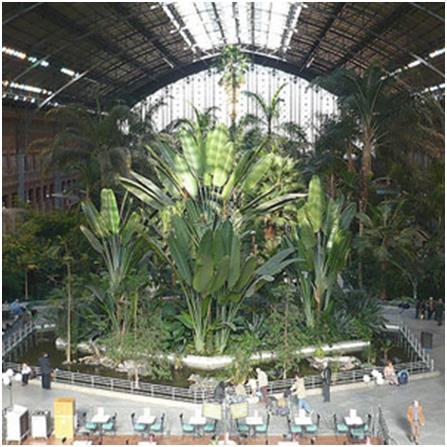 """محطة """"اتوتشا""""، وهي أكبر محطة قطار في العاصمة الإسبانية - مدريد، وأعادت السلطات بناءها بعدما اشتعلت فيها النيران عام 1892، وصمم"""
