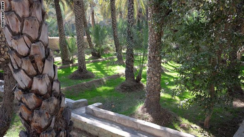 وتوظف الواحة قنوات التروية القديمة المعروفة بالأفلاج، ما جعلها أحد مواقع التراث العالمي في قائمة منظمة اليونيسكو الدولية.