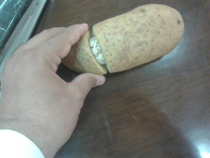 بالصور.. مواطن يشترى ثمار بطاطس 0bc7587f-8e2b-4fea-a