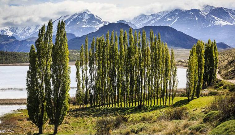 حديقة باتاغونيا (تشيلي):