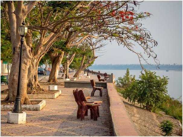 يُمكن لزوار مدينة كراتي في كمبوديا المطلة على النهر الاستمتاع برؤية دلافين إيراوادي التي لا تشبه باقي الدلافين التي نعرفها، كم
