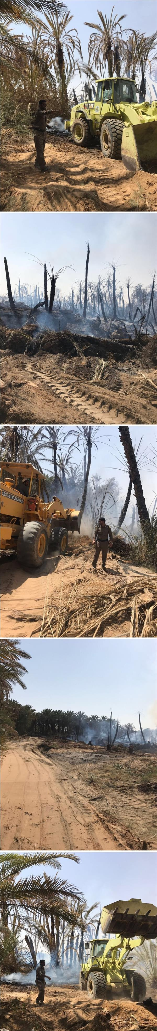 الدفاع المدني يسيطر على حريق بمزارع نخيل بوادي الدواسر