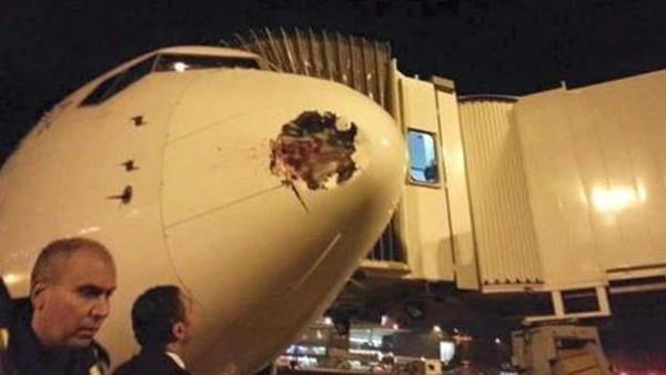 افلام سكس خليجى - نجاة طائرة مصرية من السقوط بسبب طائر عملاق