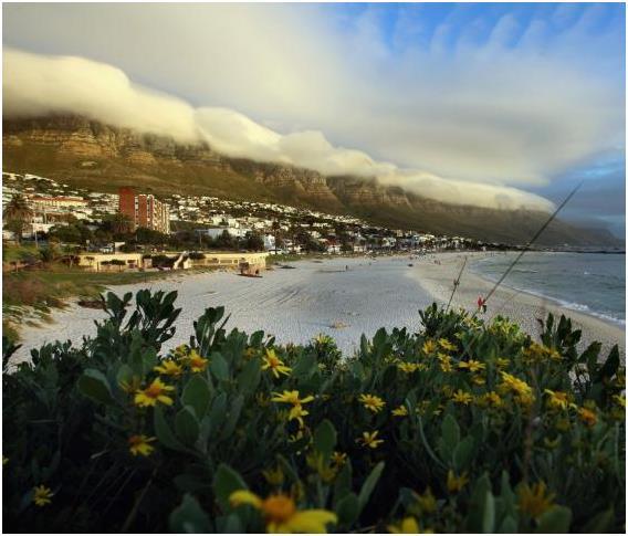 كيب تاون في جنوب أفريقيا، وتبلغ تكلفة الفرد في المتوسط خلال يوم: 93,30 دولار.