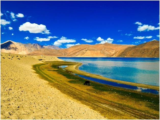"""بحيرة """"بانغونغ ستو"""" الواقعة في جبال الهيمالايا، بين الهند وجبال التبت، وتتميز بصفاء مياهها مع المناظر الطبيعية الخلابة للجبال."""