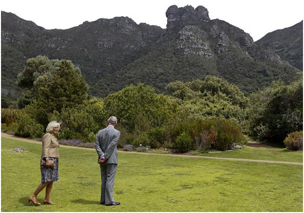 على السياح الذين يعشقون الحدائق والنباتات زيارة محمية كيب فلورال في جنوب إفريقيا، إذ تضم الحديقة النباتية الوطنية كيرستينبوش 7