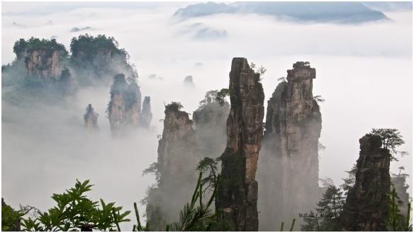جبال تيانزي الصينية الشاهقة، وهي أحد المحميات الطبيعة الجبلية، وتغطي مساحة قدرها 67 كيلومترا مربعاً ، ويبلغ ارتفاع أعلى قمة 26