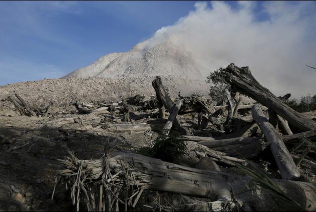 جذوع أشجار تحولت إلى رماد في منطقة خطرة بقرية مهجورة بهضبة كارو شمال سومطرة