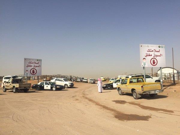 بالصور.. أمانة الرياض تغلق سوق الإبل بالجنادرية