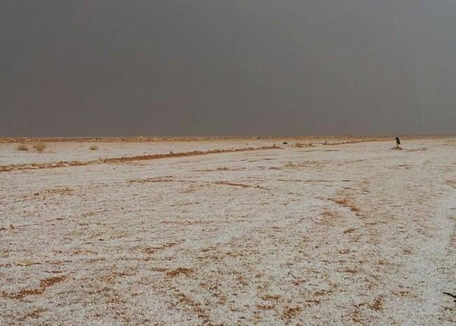 بالصور .. البرد والمطر يغطي اليوم حزم الجلاميد في الشمالية