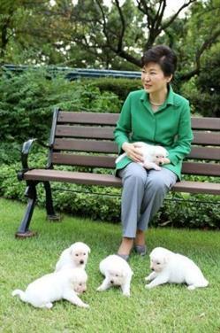 شكوى ضد رئيسة كوريا الجنوبية المعزولة لتخليها عن كلاب