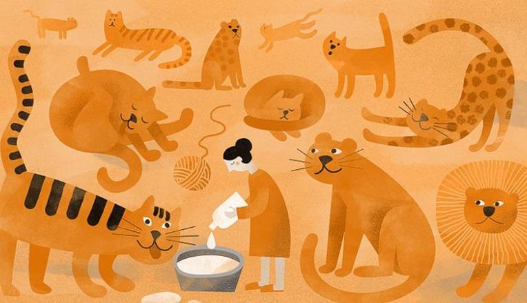رعاة للقطط الكبيرة