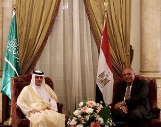 وزير الخارجية المصري يستقبل وزير الخارجية