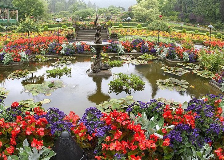الحديقة المعجزة في قائمة أجمل حدائق الزهور في العالم Aa7f93ea-f120-424c-9daf-8e1d36ee80e3