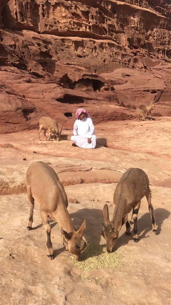 بالصور.. شاب سعودي ينشئ محمية b6659b6c-f1da-4e90-b