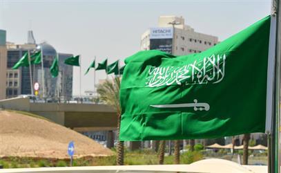 """المملكة تعرب عن أسفها إزاء استمرار مقاطعة بعض الدول الغربية لبند """"حقوق الإنسان"""" في الأراضي المحتلة"""