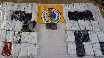 """""""حرس الحدود"""" يحبط تهريب أكثر من 270 كيلوجراما من الحشيش المخدر بجازان"""