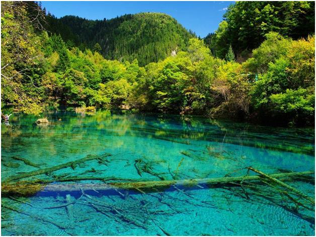 """وادي """"جيوتشايقو""""، وهو محمية طبيعية في شمال مقاطعة """"سيتشوان"""" فى جنوب غرب الصين. ويعتبر جزءاً من سلسلة جبال التبت، ويعرف بوادي ا"""
