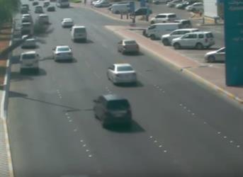 بالفيديو.. نجاة سائق من وقوع حادث كبير بعد سقوط نخلة أمامه فجأة في أبو ظبي