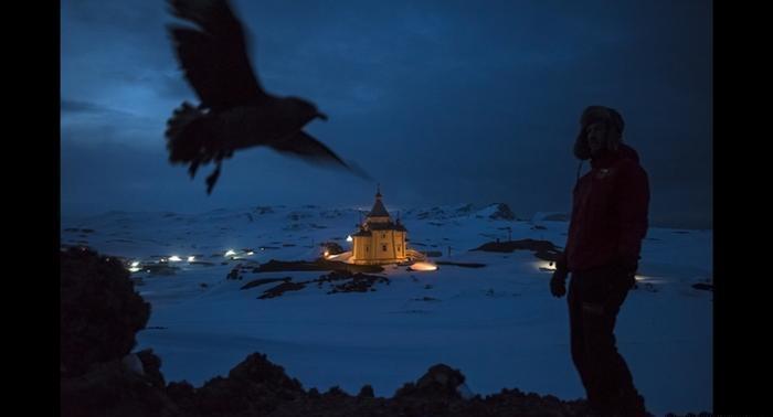 الحياة اليومية في القطب الجنوبي
