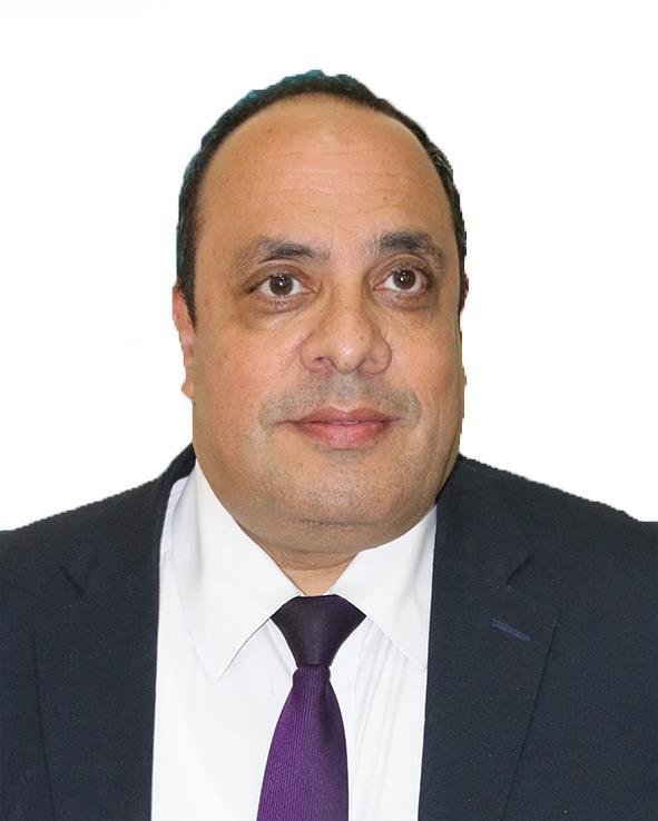 د. محمد الشبشيري