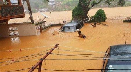 ارتفاع عدد الوفيات اثر الفيضانات في سيراليون إلى 312 (الصليب الأحمر)