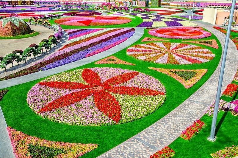 الحديقة المعجزة في قائمة أجمل حدائق الزهور في العالم E6448d85-09b5-45c3-8a98-ba71361e9997