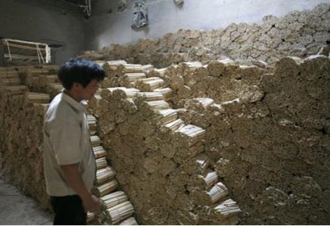 تشهد الصين قطع 20 مليون شجرة سنوياً للإيفاء باحتياجات المواطنين من الاعواد الصينية الشهيرة، والتي تُستخدم في تناول الغذاء.